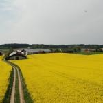 Bauernhof Schemmer